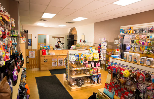 Klips Pet Grooming & Boutique